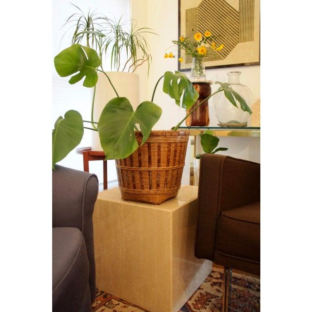 Boho Chic Organic Modern Rattan Planter Basket For Sale - Image 3 of 8