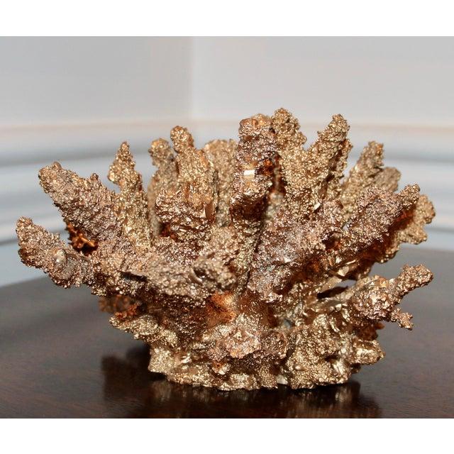 Designer Gilded Coral - Image 3 of 7