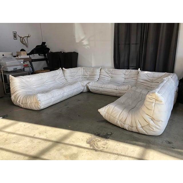 Vintage White Ligne Roset Togo Sofa Set Designed by Michel Ducaroy For Sale - Image 13 of 13