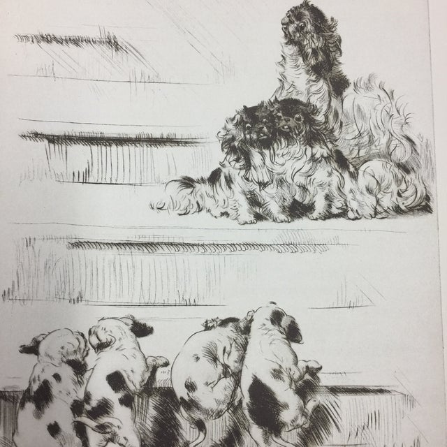 Children's Puppies on the Stairs Diana Thorne, 1930s For Sale - Image 3 of 3