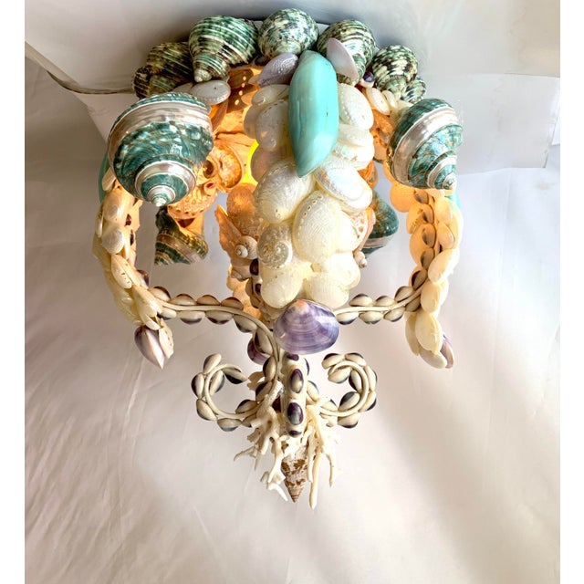 Magical crown chandelier laden with pearled Abalone and polished shells. Whites, turquoise and royal purples make up the...