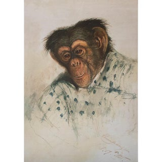 Rare 1835 Portrait of Chimpanzee by Edward Lear, XL Reproduction Print For Sale