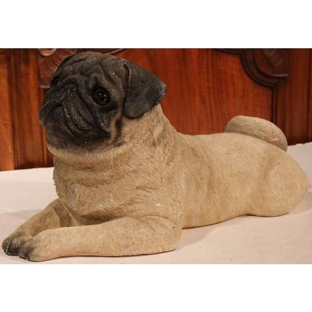Early 20th Century French Terracotta Pug Puppy With Glass Eyes For Sale - Image 4 of 8