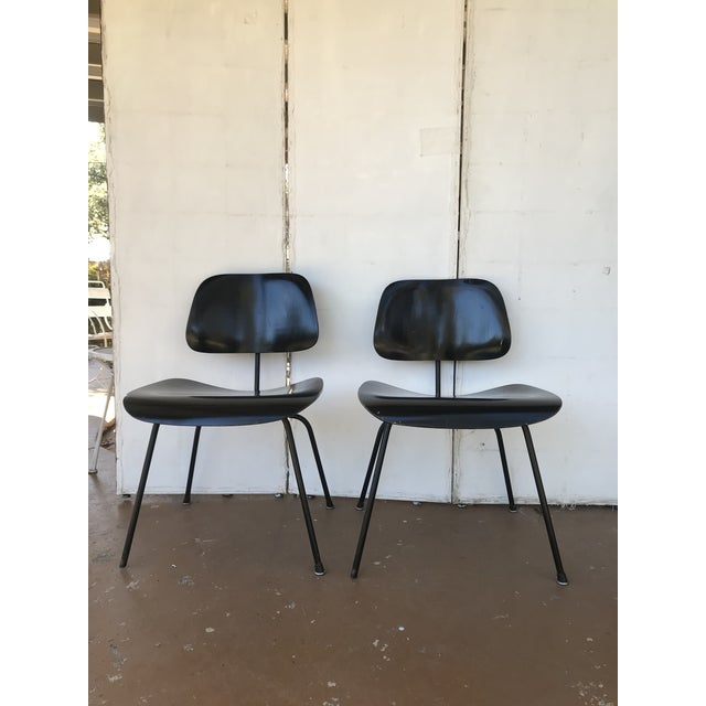 Metal 1950s Eames Ebony Plywood Dcm Side Chair - a Pair For Sale - Image 7 of 7
