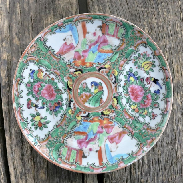 Antique Chinese Qing Rose Medallion Porcelain 6-Inch Cupped Plates Set of 8 For Sale - Image 6 of 13