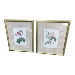 Pierre Joseph Redoute Botanical Rose Lithographs - a Pair