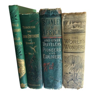 19th Century Antique First Edition Illustrated Decorative Books - Set of 4 For Sale
