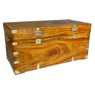 Chinese Export Camphorwood Trunk For Sale