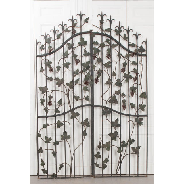 "Pair of French Early 20th Century Painted Wrought-Iron ""Grapevine"" Gates For Sale - Image 11 of 13"