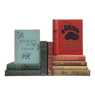 Cabin Book Decor: Great Outdoors Stack - Set of 10