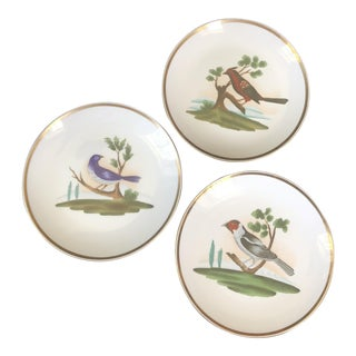 Chelsea House Decorative Plates Birds - Set of 3