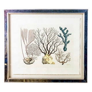 "Vintage Mirrored Framed 32"" by 28"" Colored Print With Coral Motifs by Trowbridge For Sale"