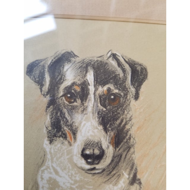 English Traditional Fox Terrier Pastel Conte Drawing For Sale - Image 3 of 6
