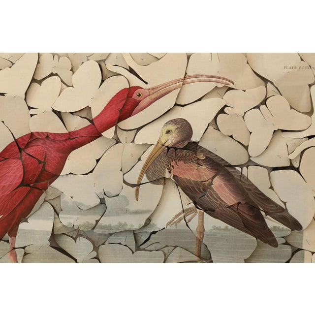 Wood Butterfly Box Scarlet Ibis For Sale - Image 7 of 9