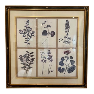 Guy Chaddock Home Set of 6Botanical Prints in Black & Gold Chonoiserie Frame For Sale