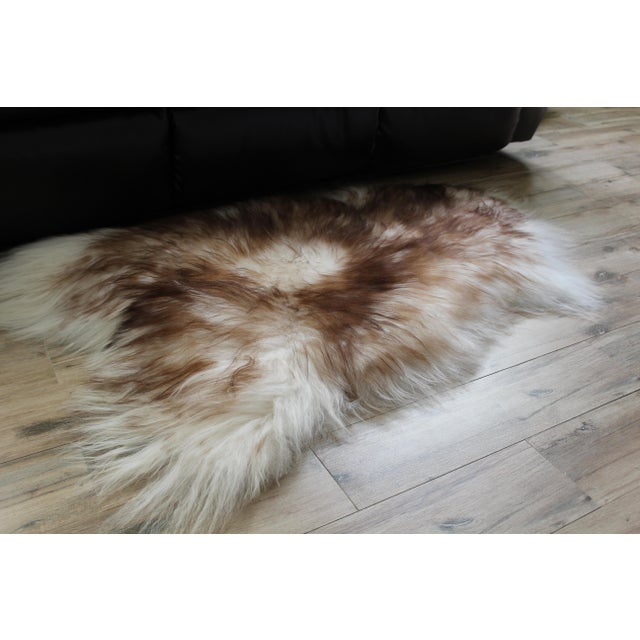 Modern Genuine Icelandic Sheepskin Shade of Brown Rug Throw- 2′ × 3′ For Sale In Chicago - Image 6 of 9