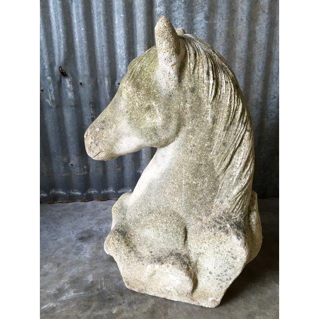 Antique Concrete Horse Head For Sale - Image 5 of 11