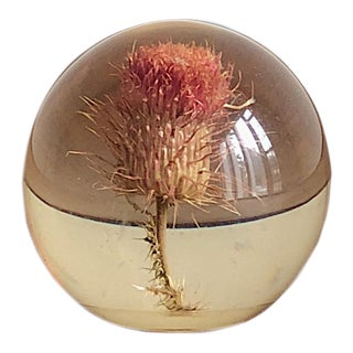 Vintage Thistle Glass Paperweight For Sale