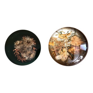 Autumnal Vintage Paperweights - a Pair For Sale