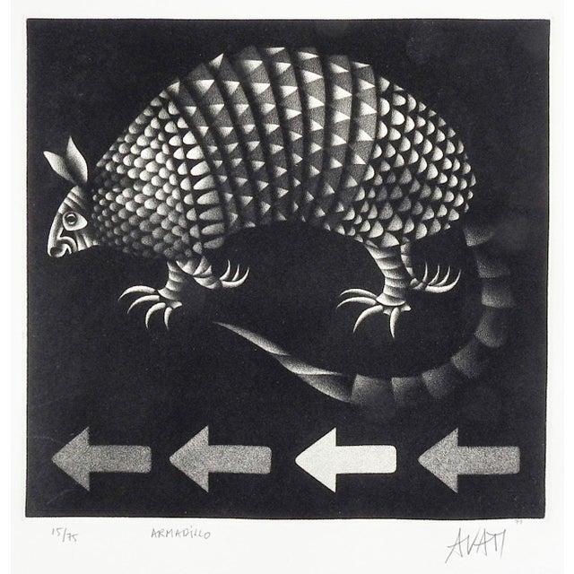 Abstract Mario Avati Armadillo Mezzotint For Sale - Image 3 of 3