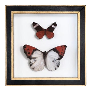 Red and White Framed Butterfly Sculpture For Sale