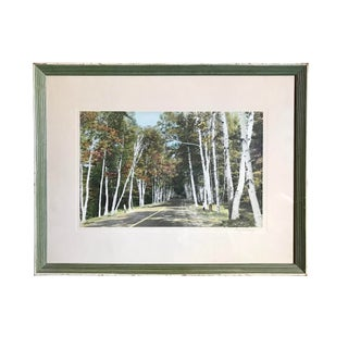 American Guy Shorey Signed Photograph of White Birch Memorial Drive Us Route 2 New Hampshire For Sale