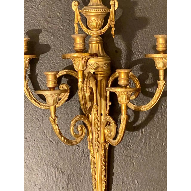 Traditional Adams Style Five Arm Tassel Decorated Dore Bronze Wall Candelabras - a Pair For Sale - Image 3 of 13