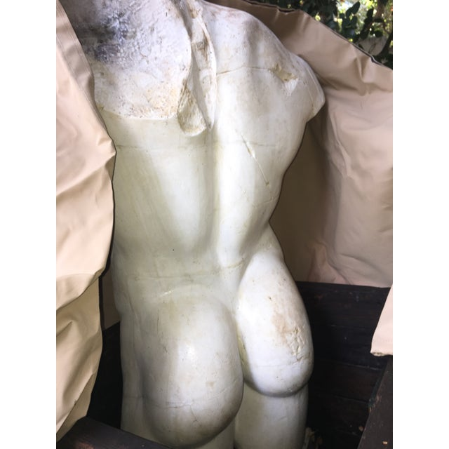 1980s 1980s Vintage Plaster Male Torso Statue For Sale - Image 5 of 12