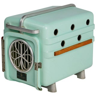 1960s Shamrock Crates Pet Carrier in Mint Green For Sale
