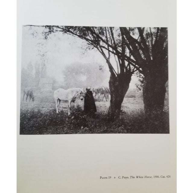 Brown The Collection of Alfred Stieglitz - Fifty Pioneers of Modern Photography by Weston J. Naef For Sale - Image 8 of 9
