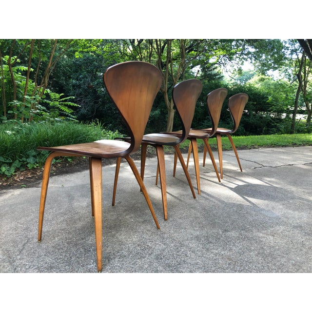 Norman Cherner for Plycraft Chairs - Set of 4 For Sale - Image 10 of 13