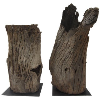 Pair of Tree Trunk Floor Lamps For Sale