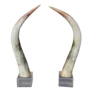 Steel Horns Mounted on Lucite Base - a Pair For Sale