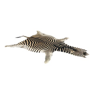 2010s Modern Forsyth Authentic Zebra Hide Rug