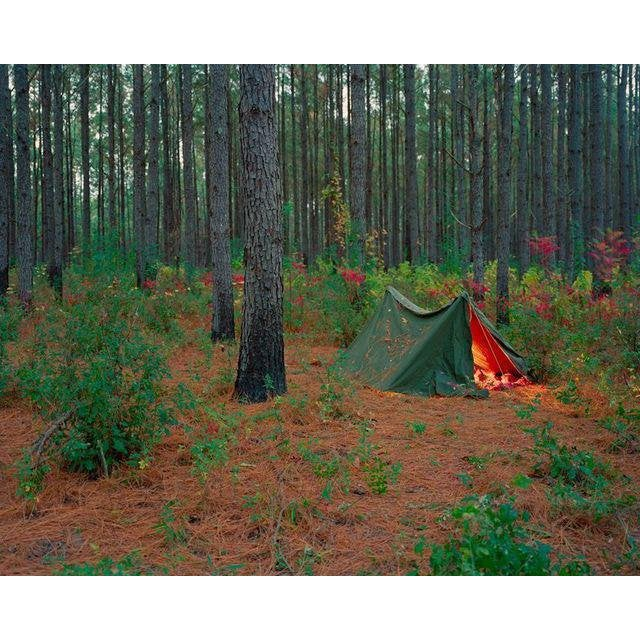 Jeremy Chandler, Twilight Tent, 2011 For Sale