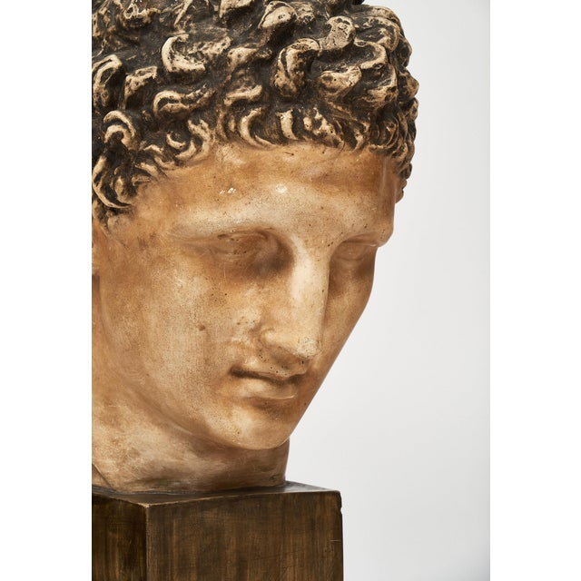 1930s French Vintage Hermes Bust For Sale - Image 5 of 12