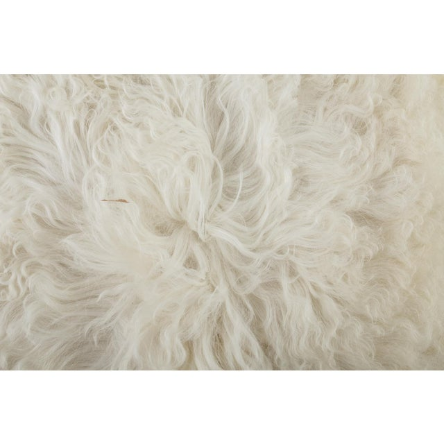 "Children's Contemporary Long Soft Wool Sheepskin Pelt - 2'0""x3'0"" For Sale - Image 3 of 6"