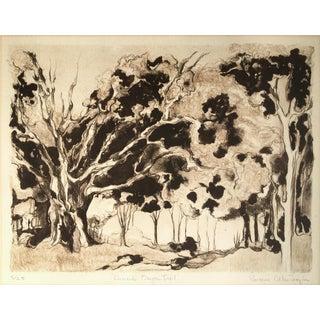 'Armand's Bayou Trail, Houston, Texas,' by Rosanne Frazier For Sale
