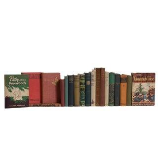 Vintage Wilderness Cabin Book Set, (S/20) For Sale
