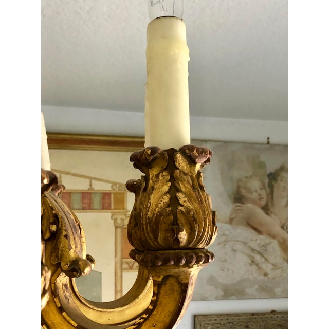 Gold Mid 19th Century Italian Carved Gilt Wood Chandelier For Sale - Image 8 of 13