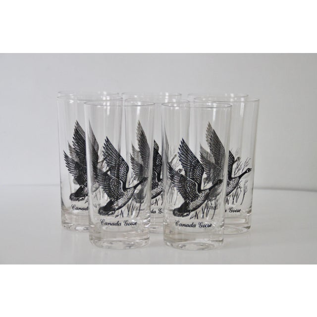 Mid-Century Modern 1960s Canada Goose Glasses - Set of 8 For Sale - Image 3 of 5