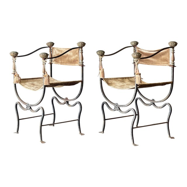 Pair of Antique Iron and Brass Curule Chairs For Sale