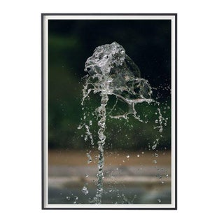 "Mo Gambill ""Water Music No. 1"" Unframed Photographic Print For Sale"