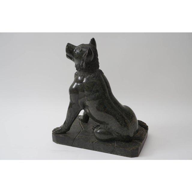 "Bronze 19th Century Italian Grand Tour ""Molossian Hound"" Marble Sculpture For Sale - Image 7 of 12"