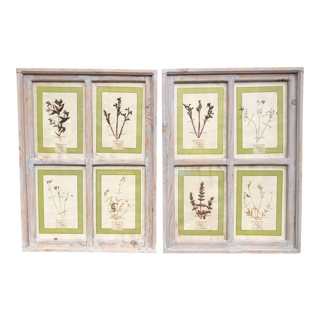 Pair of 21st Century Italian Dried Botanical Flowers in Painted Frames For Sale