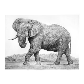 "Contemporary ""Elephant Ii"" Rick Shaefer Charcoal Print For Sale"