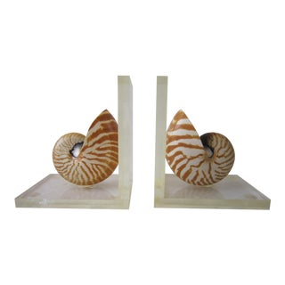 Nautilus Shell Bookends - a Pair For Sale