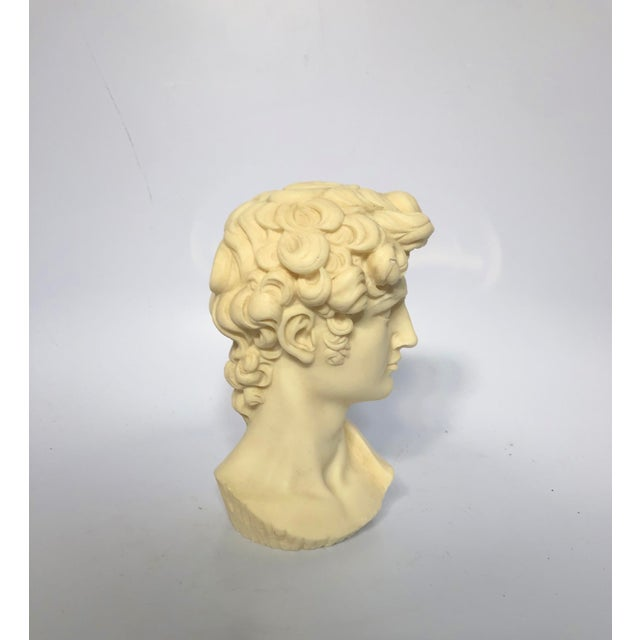 Traditional Vintage Mid-Century Neoclassical Style Bust of David Sculpture For Sale - Image 3 of 7