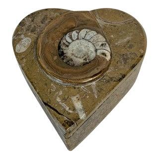 Vintage Fossil Trinket Box For Sale