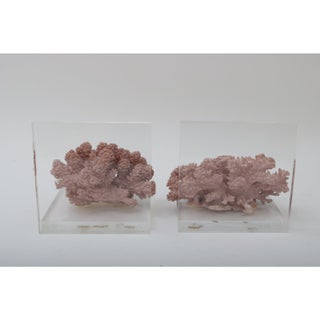 Mid Century Style Lucite and Mauve Sustainable Reef Bookends - a Pair Preview
